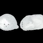 ゴマフアザラシ